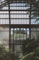 Discovering the greenhouses of the Jardin des Plantes